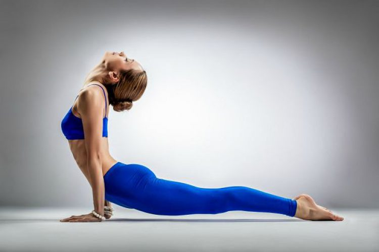 z20018280Q,stretching